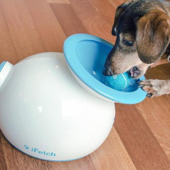 iFetch : lanceur de balles automatique pour chien