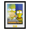 Cadre The Simpsons Homerland