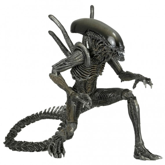 Figurine Aliens Warrior Serie 7