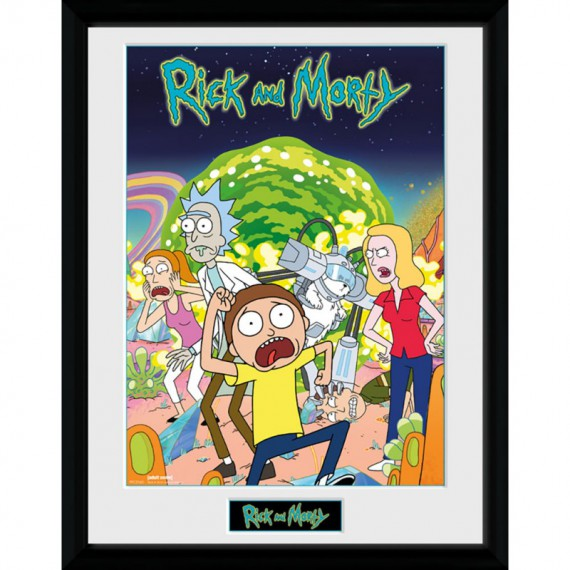 Cadre Rick et Morty Compilation