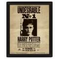 Cadre mural avis de recherche Harry Potter et Sirius