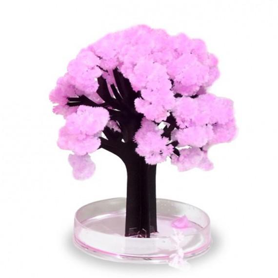 Sakura bonzaï magique