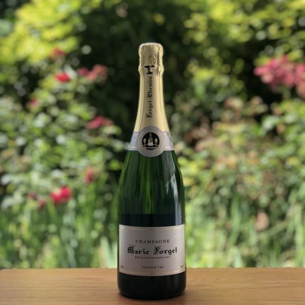 Adopte une vigne de champagne